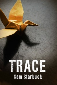 Yellow origami crane on a grey stone background Title- Trace Author- Sam Starbuck